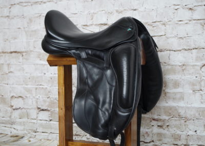 Bliss of London Paramour Dressage